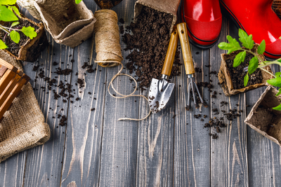 From Compost to Campaigns: How to Reach Your Sustainability Goals